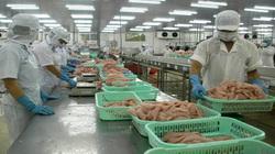 Lo ngại: Chỉ 40% doanh nghiệp thủy sản có khả năng hồi phục sản xuất ngay sau giãn cách xã hội