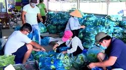 Long An: Nhiều giải pháp tiêu thụ nông sản trong mùa dịch