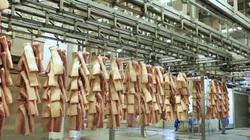 Nguy cơ thiếu nguồn cung thịt đến Tết Nguyên Đán 2022 nếu dịch kéo dài