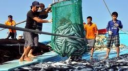 Phó Thủ tướng Lê Văn Thành yêu cầu giải cứu ngành thủy sản