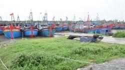 Thanh Hóa: Gấp rút thu hoạch lúa trước mưa bão, đảm bảo năng suất vụ Hè Thu
