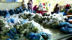 Tiền Giang: Hơn 100.000 túi combo nông sản đến tay người tiêu dùng