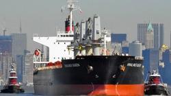 Nhờ Nhật tìm các thủy thủ tàu Vinalines Queen