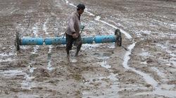 Công dụng của phân lân với đất và cây trồng