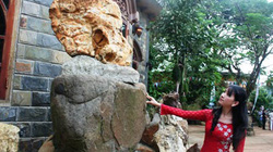 Bảo tàng đá ở Lâm Đồng