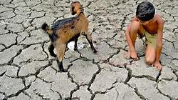 Nông thôn Ấn Độ khát nước