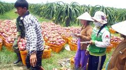 Bỉ muốn hợp tác nhập nông sản Việt
