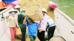 Doanh nghiệp sẵn sàng mua gạo tạm trữ