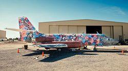 Máy bay quân sự màu mè như... tắc kè hoa