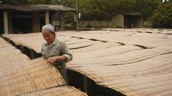 Thêm vốn cho làng nghề miến dong