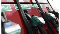 Thế giới chi 2.000 tỷ USD để nhập dầu trong năm nay