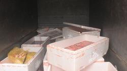 300kg lòng lợn, gà ướp hóa chất từ Trung Quốc suýt lọt ra thị trường