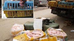 Chở 4 tấn gà thải, nầm lợn hôi thối về Hà Nội