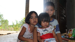 Cuộc sống khốn cùng của 5 đứa trẻ săn tìm bọ cạp mưu sinh