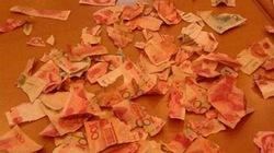 Bé trai xé vụn 100 triệu đồng tiền tiết kiệm của bố mẹ
