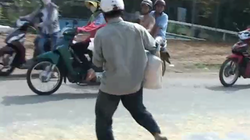 """Không khởi tố điều tra vụ """"hôi ngô"""" ở Đồng Nai"""