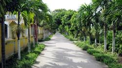 Tập trung hỗ trợ quy hoạch nông thôn mới