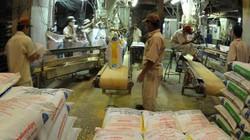 Proconco dành 4 tỷ đồng tri ân nông dân