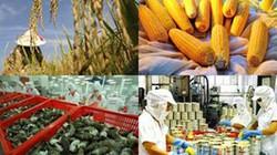 Hỗ trợ xúc tiến thương mại các mặt hàng nông nghiệp