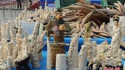 Trung Quốc truyền hình trực tiếp vụ tiêu huỷ 6,1 tấn ngà voi