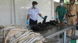 TP.HCM: Xử phạt vi phạm an toàn thực phẩm 16 tỷ đồng