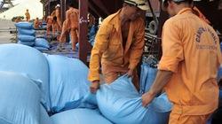 Xuất khẩu gạo 2014: Cạnh tranh khốc liệt về giá