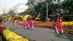 TP.HCM: Lộng lẫy đường hoa Nguyễn Huệ dịp tết