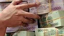 Long An: Truy tố một giám đốc lừa đảo trên 20 tỷ