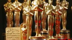 Bộ phim nào thống trị đề cử Oscar 2014?