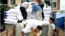 Kỷ luật các cán bộ lấy gạo cứu đói dân đi bán