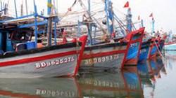 Phú Yên: Khởi công xây dựng cảng cá Phú Lạc