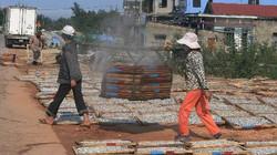 Nghề hấp cá biển ở Cửa Việt