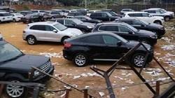 Bóc gỡ đường dây buôn lậu 1.200 siêu xe trong 2013