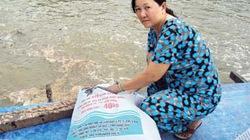 Giữ nghề nuôi cá basa cho quê