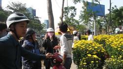 """Đà Nẵng: Người bán hoa Tết """"méo mặt"""""""