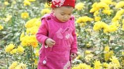 Bé Thỏ lần đầu đi chợ hoa xuân