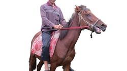 Quên tuổi lục tuần trên lưng ngựa