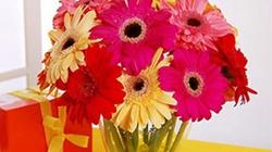 Ngày Tết nên cắm hoa gì để rước tài lộc vào nhà?