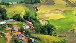 Lào Cai lại xuất hiện động đất