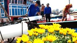 Hàng nghìn ngư dân miền Trung đón tết trên vùng biển Hoàng Sa, Trường Sa