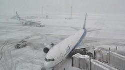 Tuyết rơi dày gây thương vong tại Tokyo