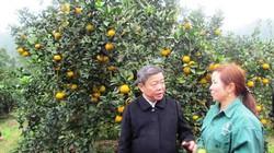 Hà Tĩnh: Giàu lên nhờ nông thôn mới