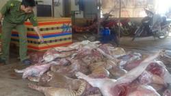 Đồng Nai tiêu hủy 650kg thịt heo thối tại lò mổ