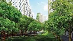 Phú Yên: Rút giấy phép dự án cả nghìn tỷ đồng