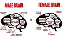 5 điểm khác nhau đặc biệt giữa đàn ông và phụ nữ