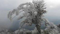 Các vùng núi cao Sa Pa xuất hiện băng giá