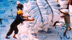 Tháng 1 xuất khẩu hơn 307.000 tấn gạo