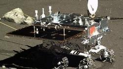 """Thỏ Ngọc của Trung Quốc """"chết yểu"""" trên mặt trăng"""
