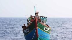Đi cứu ngư dân ở Hoàng Sa, tàu cứu nạn bị tàu lạ uy hiếp