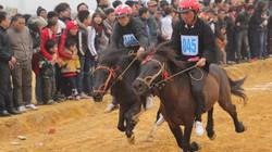 Xem đua ngựa  Mông ở Thủ đô
